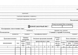 Дневной заборный лист: форма ОП-6 (скачать документ)