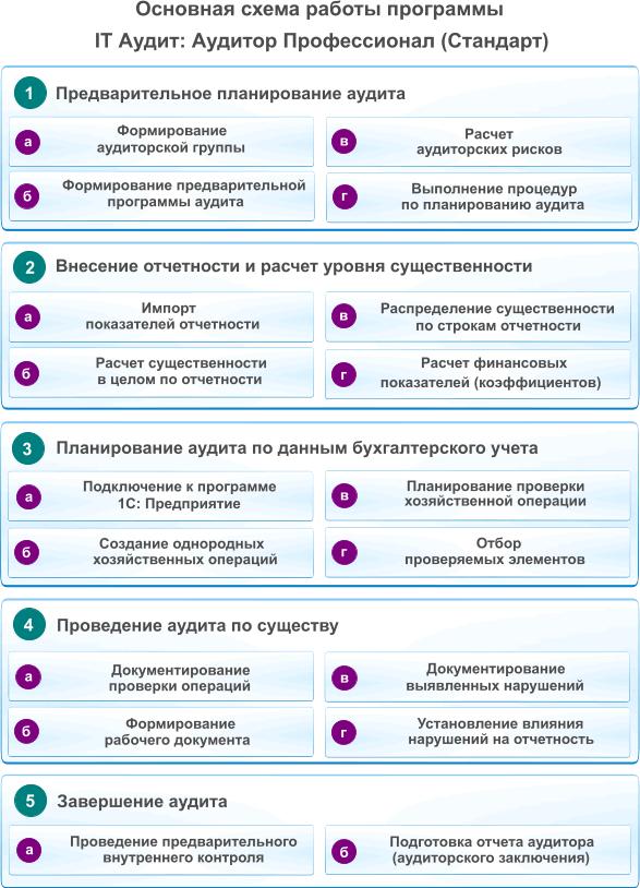IT Audit: Аудитор скачать