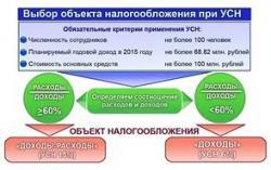 Индивидуальные предприятия на УСН теперь не смогут прибавлять сумму налогов, уплаченных в других странах, к общим расходам