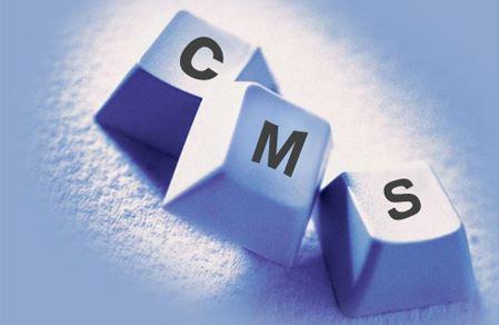 CMS. Что такое Content Management Software и можно ли без него обойтись начинающему web-бизнесмену?