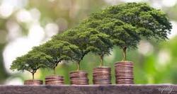 Инвестиции - риски и возможности