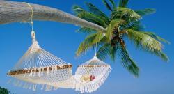 Экзотический отдых в родном городе: актуальная бизнес-идея для российских предпринимателей