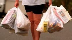 Российский малый бизнес предлагает запретить повсеместную раздачу пластиковых пакетов, ссылаясь на угрозу экологии в стране