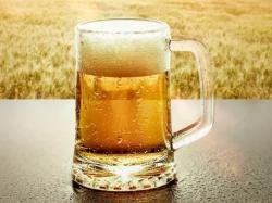 Выбираем производителя светлого пива для оптовых закупок