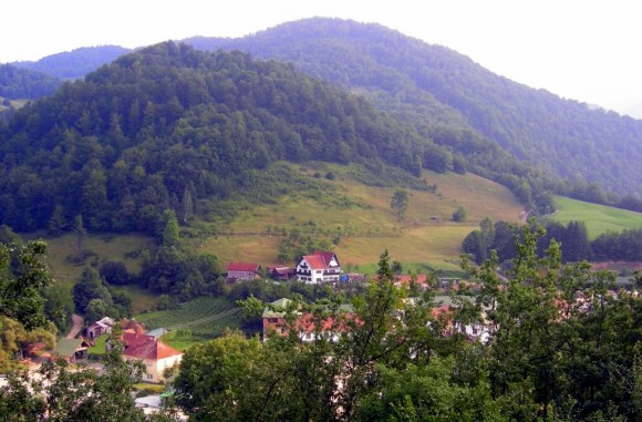 Бизнес в Сербии