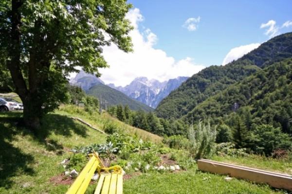 Бизнес в Словении: основные формы хозяйственной деятельности