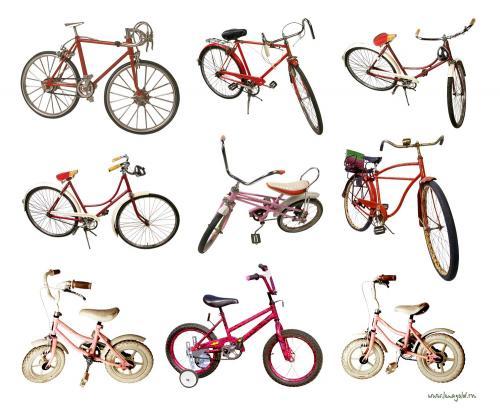 Идея бизнеса: велосипедный бизнес