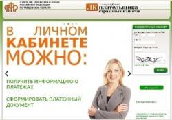 Новый онлайн-сервис ПФ России – «Личный кабинет плательщика» набирает популярность среди ИП регионов РФ