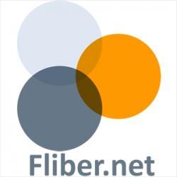 Поиск партнеров и ресурсов в Интернете. Сервис Fliber.net