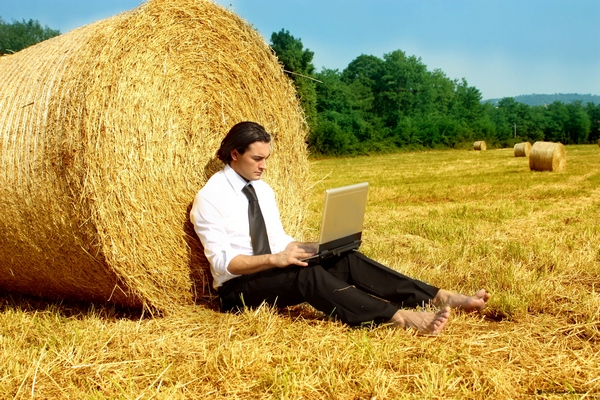 Открытие онлайн-магазина в сельской местности – идея перспективной предпринимательской деятельности