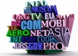 Бизнес с помощью Интернет: выбор домена
